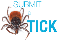 Ticks-Surveillance-Submit